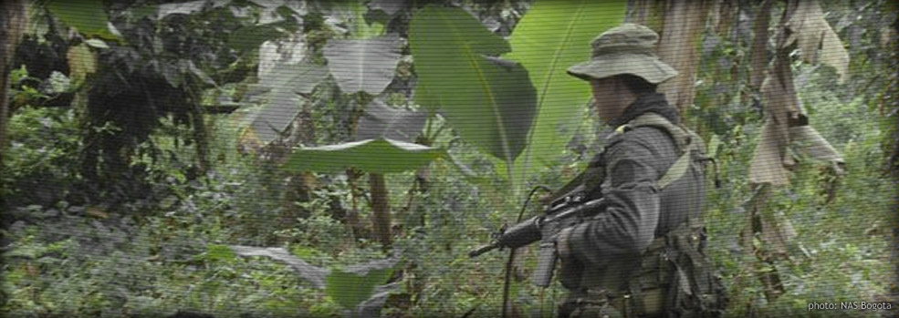 Manual eradication's junglas and civilian eradicators often provide state presence and temporary security in areas that have previously seen none and are currently dominated by illegally armed groups.